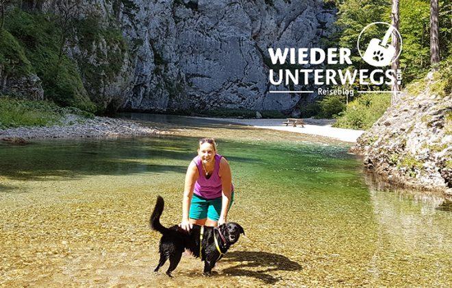Frau steht in einem Bach zwischen Bergen und streichelt ihren Hund