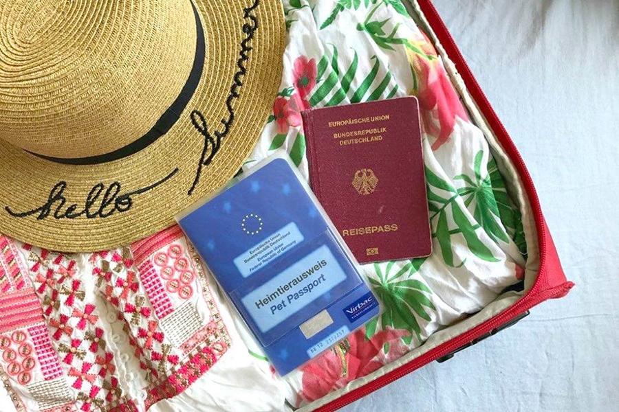 Strandtuch auf dem Heimtierausweis, Reisepass und Strohhut liegen